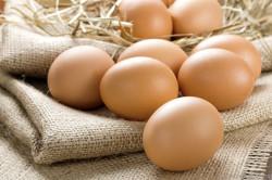 Отказ от потребления яиц перед сдачей плазмы