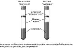 Гематокрит понижен что это значит