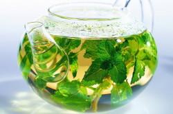 Польза чая из крапивы для очищения крови