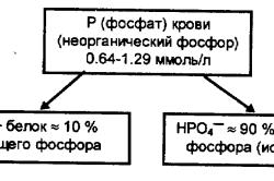 Распределение фосфора в крови