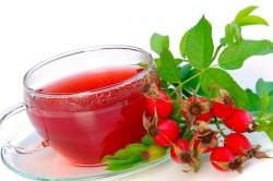 Польза отвара шиповника при анемии