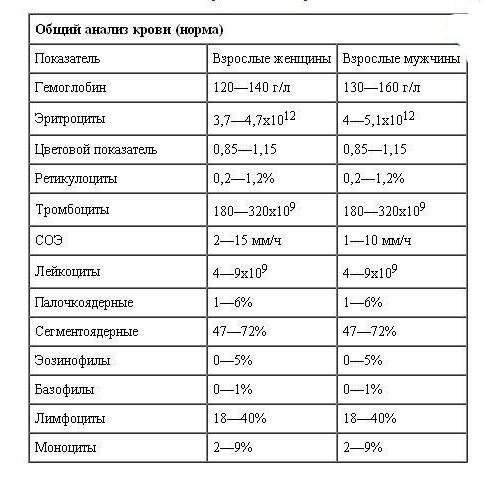 общий анализ крови у женщингематолог