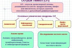 Схема острого лейкоза