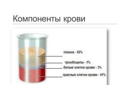 Схема компонентов крови