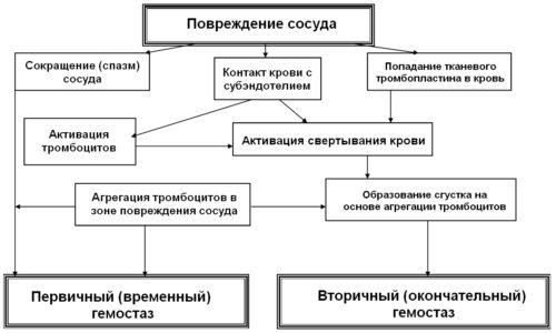 лечение анемии препараты доза