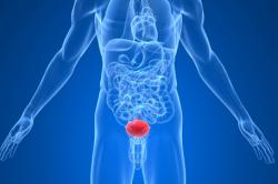 Воспаление мочеполовой системы