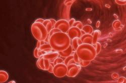 Проверка уровня гемоглобина в крови