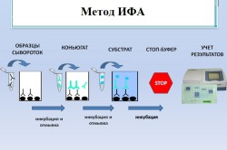 Метод ИФА
