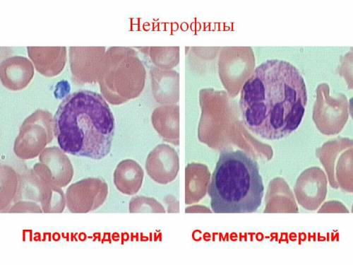 снижение крови показателей холестерина