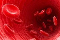 Тромбин в крови