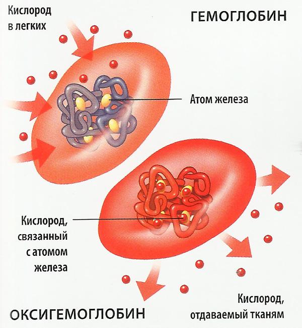 системы лечения паразитов