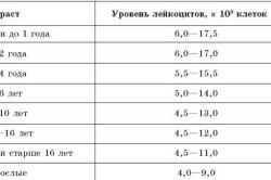 Нормальные значения лейкоцитов в крови